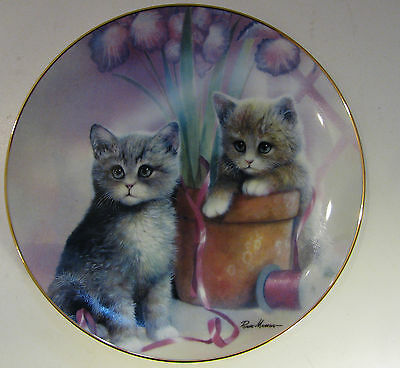 Playful Companions/kitten Cousins Collector Plate 1990/limited Editn/new/greatcd