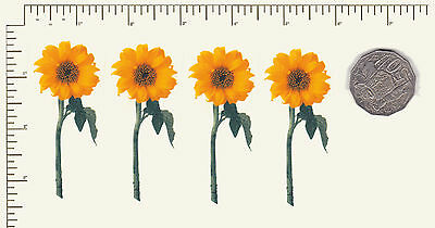 "4 x Waterslide ceramic decals Decoupage Bright sunflowers 3"" x 1 1/4""  PD728"