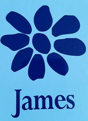 james the band tim booth magnet light blue / blue