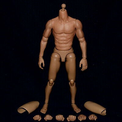Hot Toys 1/6 Scale Asia Male Muscular Action Figure Body For 12'' Head Sculpt