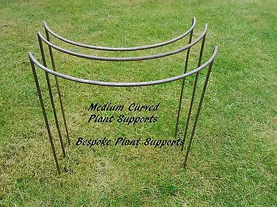 Metal Plant supports 3 pack Medium 50cm tall 37cm wide