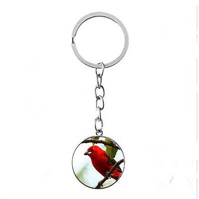 Vintage Glass photo Cabochon Tibetan silver Metal Key Ring (Red bird)