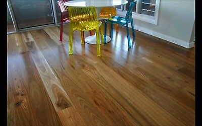 Spotted Gum Flooring 130x14mm