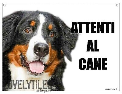 BOVARO DEL BERNESE mod 1 attenti al cane TARGA cartello IN METALLO 30x20