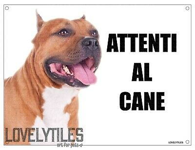 PITBULL mod 3 attenti al cane TARGA cartello IN METALLO 30x20