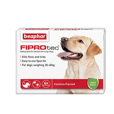 Beaphar Fiprotec Spot On Flea Tick Treatment 6 Pipettes For Large Dogs Protect