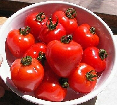 Cherry Tomato- TOMATOBERRY -10 Heirloom Vegetable Seeds-Strawberry Shaped Fruits
