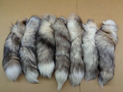 #1 Quality L Tanned White Ranch Blue Fox Tails//Crafts//Real USA Tail//Harley part