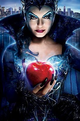 """Enchanted Movie Poster 18"""" x 28"""" ID:8"""