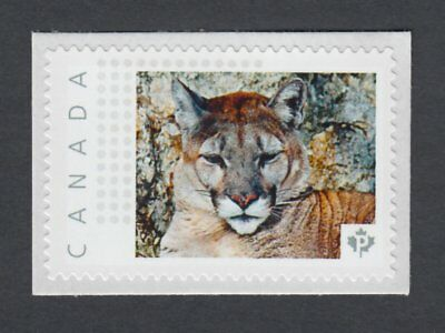 pca. PUMA COUGAR MOUNTAIN LION Picture Postage stamp Canada 2014 [p9an6/4]