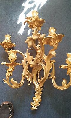 Bronze Dore Louis XV Style Rocaille Sconce