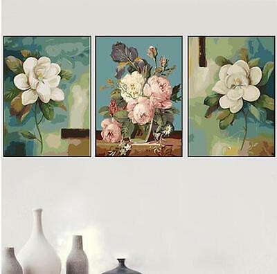 Set of Three Canvas Paint By Number Kit 3*40*50cm Flowers F3P015 S4 AU STOCK