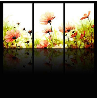 Set of Three Canvas Paint By Number Kit 3*40*50cm Flower F3P027 S4 AU STOCK