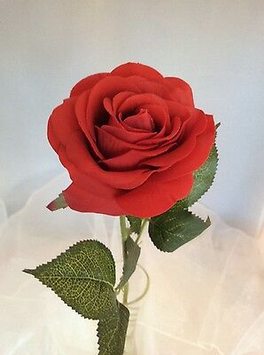 🌹 Single Red Rose - For The One You Love -Tall Stem ❤️ Very Realistic Flower