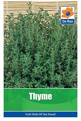2 PACKS of THYME Garden HERB SEEDS