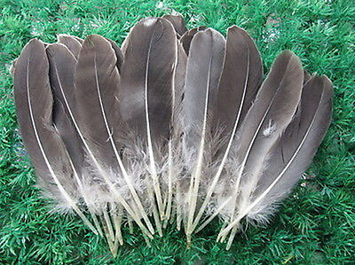 Wholesale 10-200pcs beautiful natural goose feather floating feather 6-8 inch