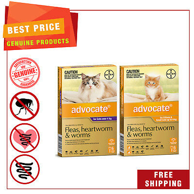 ADVOCATE Heartworm Flea Worm treatment for Cats 6 Pipettes AU Seller