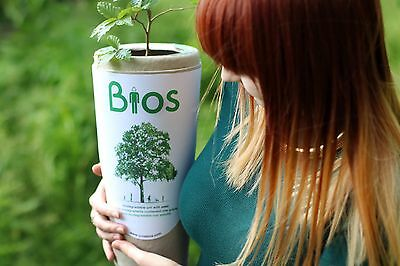 Bios Urn Biodegradable Urn for Pets Ashes with free English Oak seed.