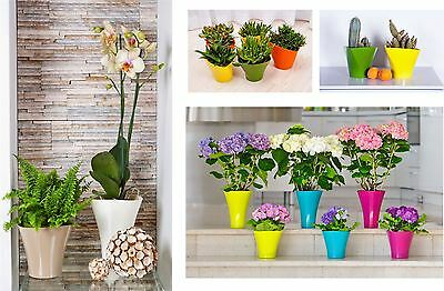 Indoor Outdoor Plastic Plant Flower Pot Garden Home Decor Wedding Wave Shape
