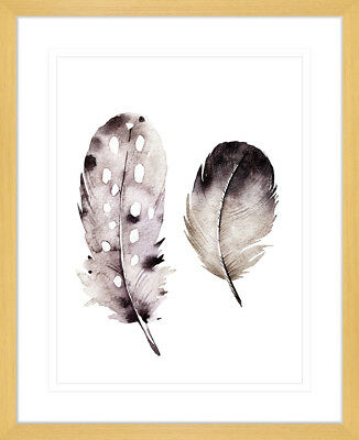 NEW Flourishing Feathers III Framed Print