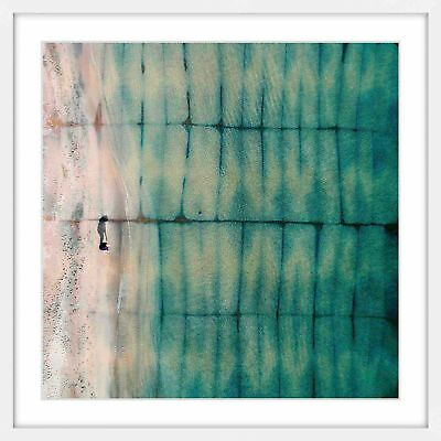 NEW Shell Searching Canvas Wall Art