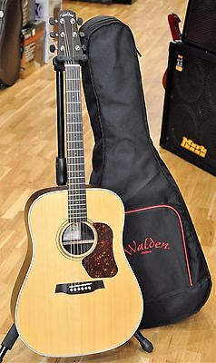 Walden D600 Dreadnought Acoustic Guitar D-600 -  Free World Shipping!