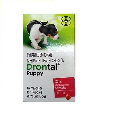 Bayer Drontal Dewormer For Puppies Oral Suspension 20 ml