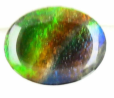 Colorful Oval Green Blue Purple  Red Cabochon Ammolite