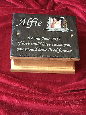 Memorial Ashes Box Urn & Personalised Photo Plaque Toy Dog, Cat, Rabbit, Bird