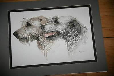 Original Water Color of Irish Wolfhounds  by Martha Van Loan Dated 1986