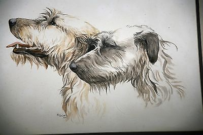 Original Water Color of Irish Wolfhounds  by Martha Van Loan Dated 1984