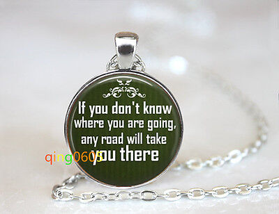 Cheshire Cat  photo glass dome Tibet silver Chain Pendant Necklace wholesale