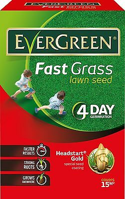 EverGreen Fast Grass Lawn Seed Carton Repair  For The Summer (4 Day Germination)