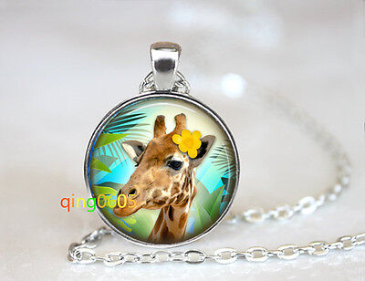 Tropical Giraffe photo glass dome Tibet silver Chain Pendant Necklace wholesale