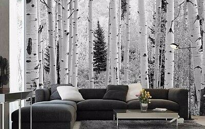 Aspen Forest, Elk Mountains, Colorado (Black and White) 12' x 8'-Wall Mural