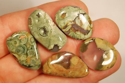 5 RHYOLITE TUMBLED STONES 17g Rainforest Jasper Healing Crystals, Creativity