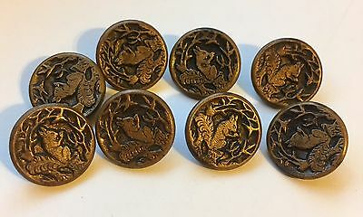 """Vintage Set Of 8 Squirrel With Acorn Metal Brass Buttons 5/8"""""""