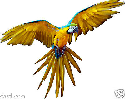 Wild Bird Blue & Yellow / Gold MACAW PARROT Flying - Window Cling Decal Sticker