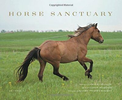 Horse Sanctuary - Horse Books