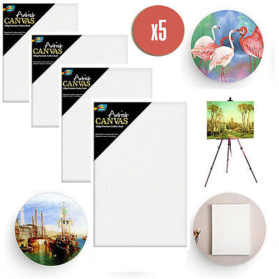5 x Artist Blank Canvas Assorted Size Large Range Wholesale Bulk Art Supplies