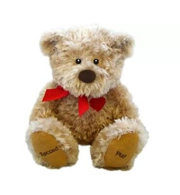 Voice Recording Talking Cuddly Soft Plush Bear Say It With Love Bear ! New