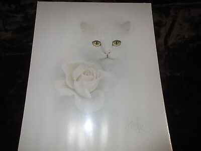 """Bob Harrison"" White Cat w/White Rose 16x 20"" Poster Picture"