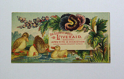 Victorian Trade Card Dr. Grosvenor's Liveraid, Ducklings in Pond Copyright 1879