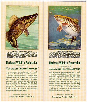 2 Ink Blotter Lot Fish Striped Bass Wall-Eyed Pike National Wildlife Federation