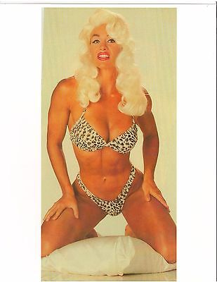Cory Everson As Jayne Mansfield Female Muscle Bodybuilding Photo Color