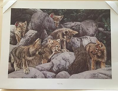 """Child's Play"" by Judy Larson, Signed & Numbered Ltd. Edition Print"