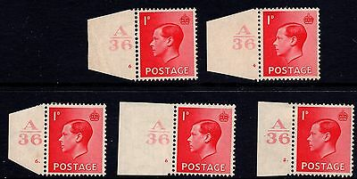 1936 Edward VIII 1d Scarlet Definitive Various Cylinders Control A36 SG458