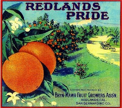 Bryn Mawr Redlands Pride Brand Orange Citrus Fruit Crate Label Art Print