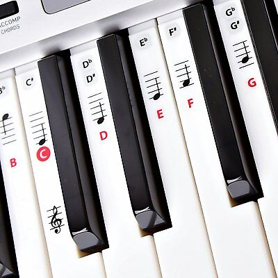 Piano Sticker Adhesive Key Note Keyboard Adult Kids Lesson Learn Education Music