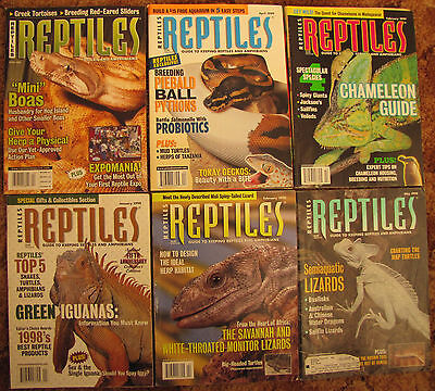 6 REPTILE MAGAZINES H SNAKES, TOADS, LIZARDS, DRAGONS ETC From 98,99 & 04 issues